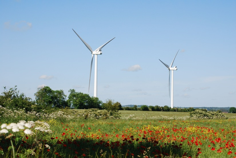 <em>Drax v HM Treasury</em> – How Green (or any other) Subsidies Can Be Withdrawn WithoutNotice